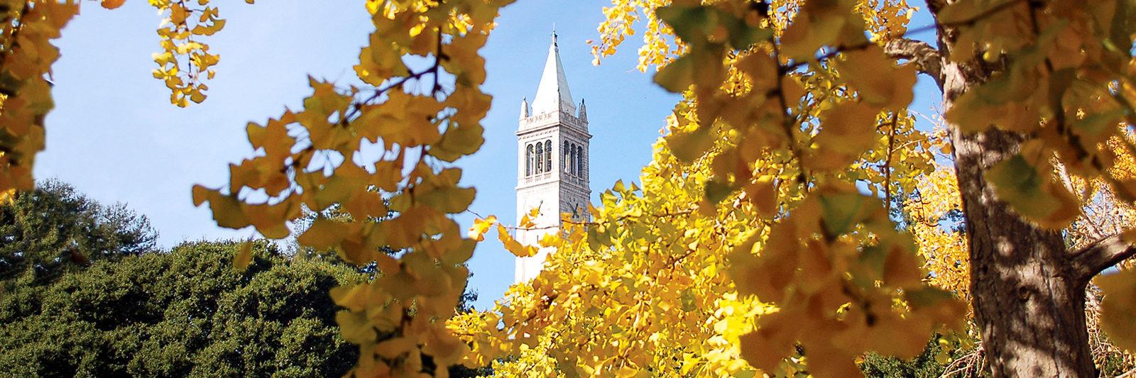 campanile in fall photo